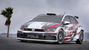 Volkswagen Polo R5 Liveries
