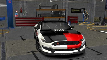 Ford Special Edition Mustang's